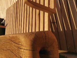 Klop iz starega lesa - hrast